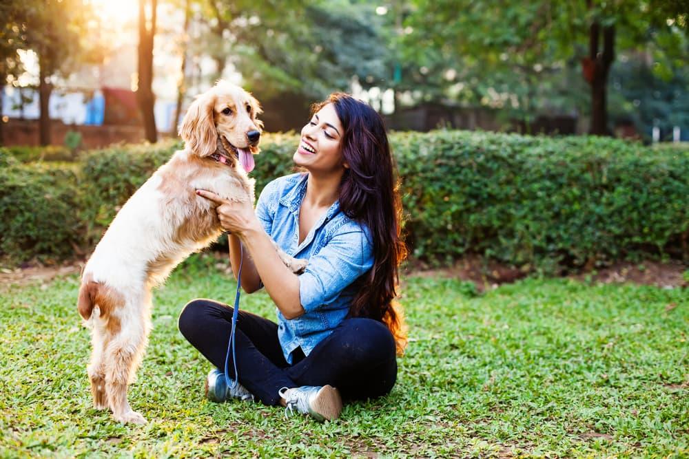 Dog Park Etiquette: 4 Must-Know Commands | Great Pet Care