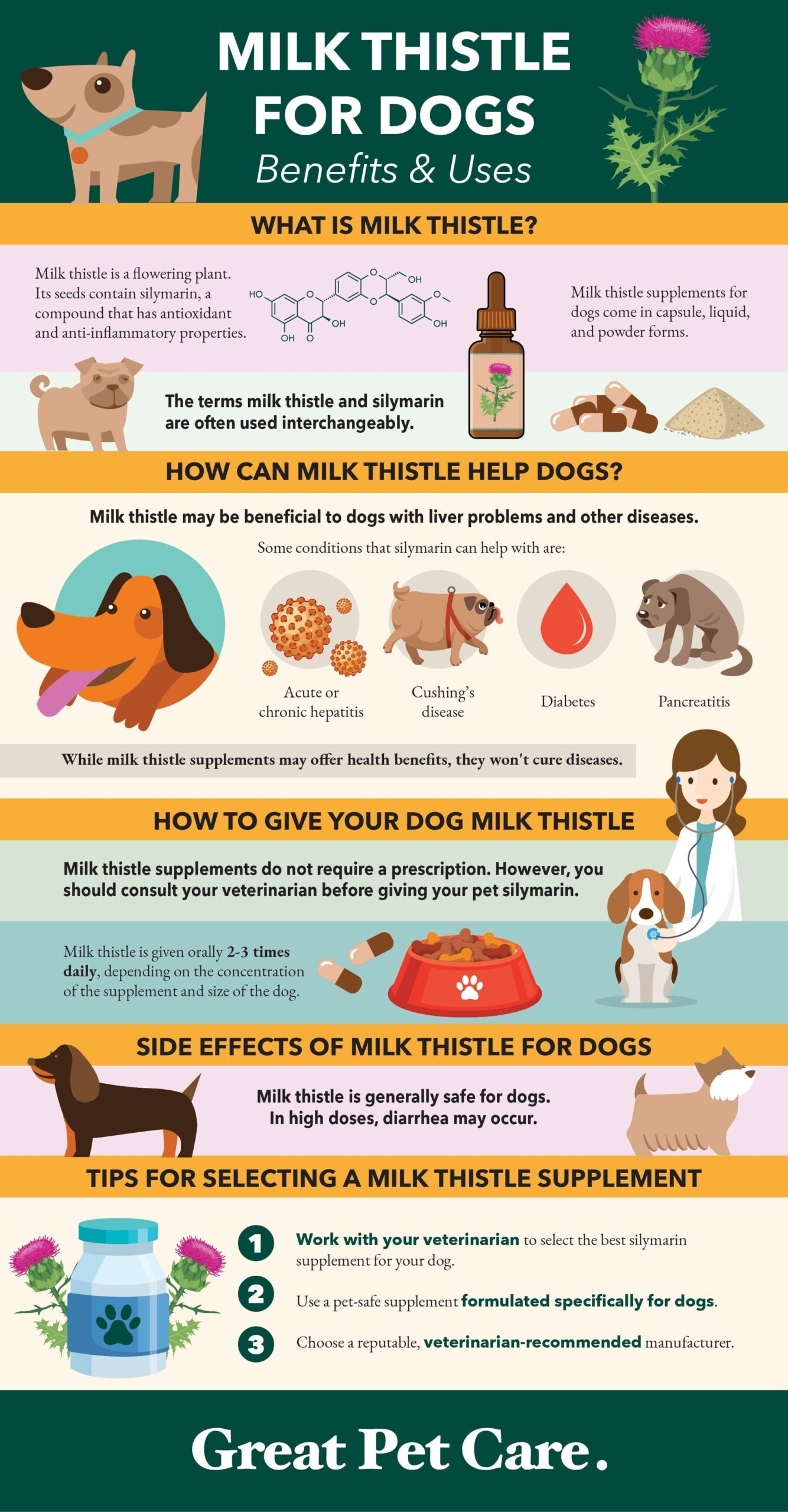 milk thistle for dogs infographic
