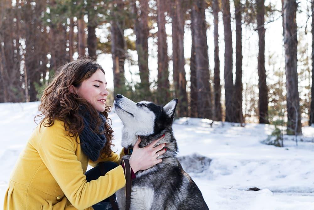 woman walks dog in snow