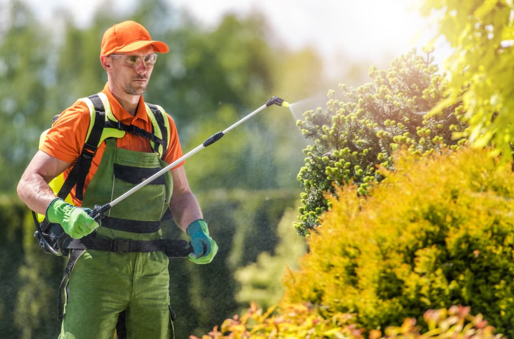 worker sprays pesticides