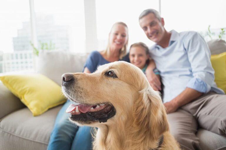 Family with Golden Retriever