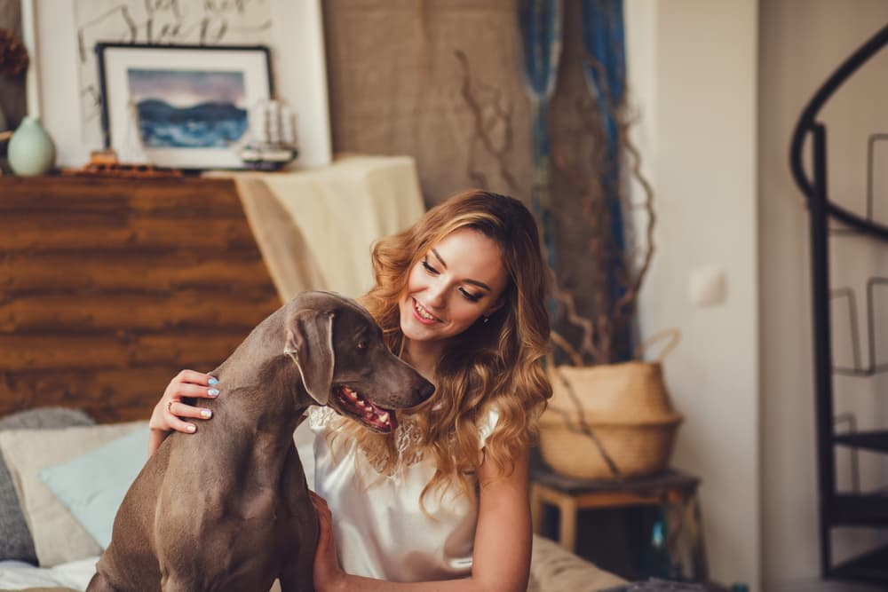 Woman letting dog come to her