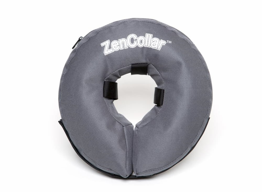 ZenCollar inflatable collar for dogs