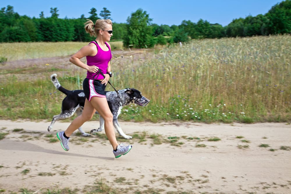 Owner and dog on a run