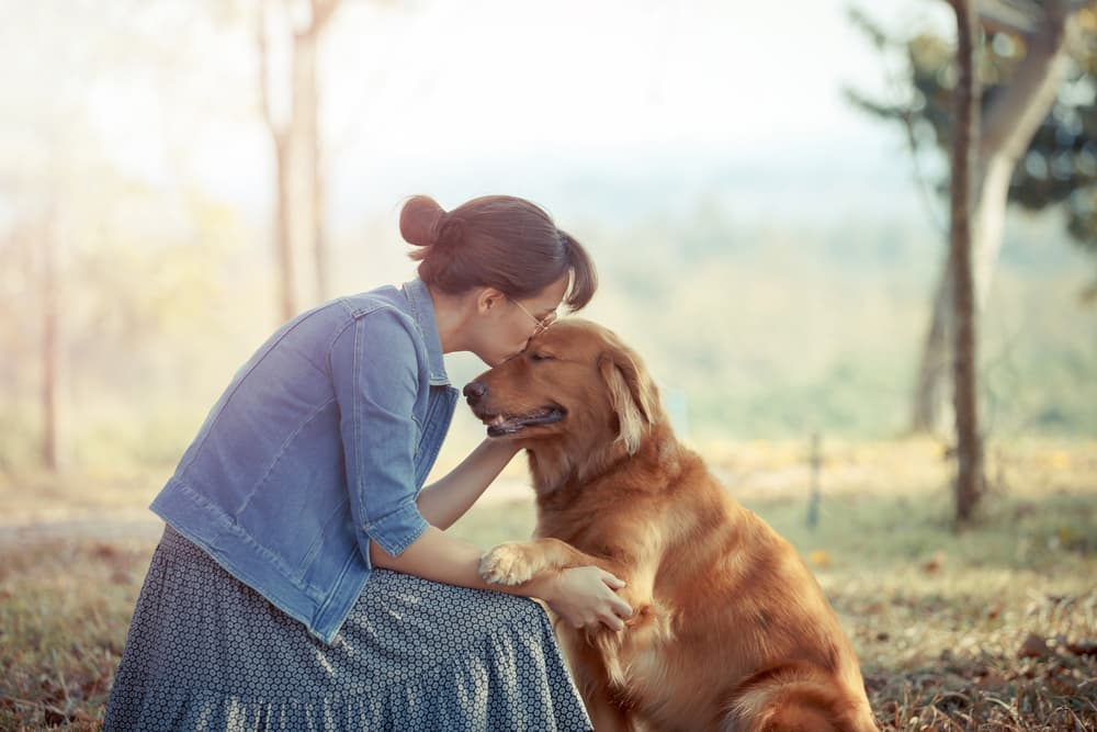 Owner petting her golden retriever on a walk