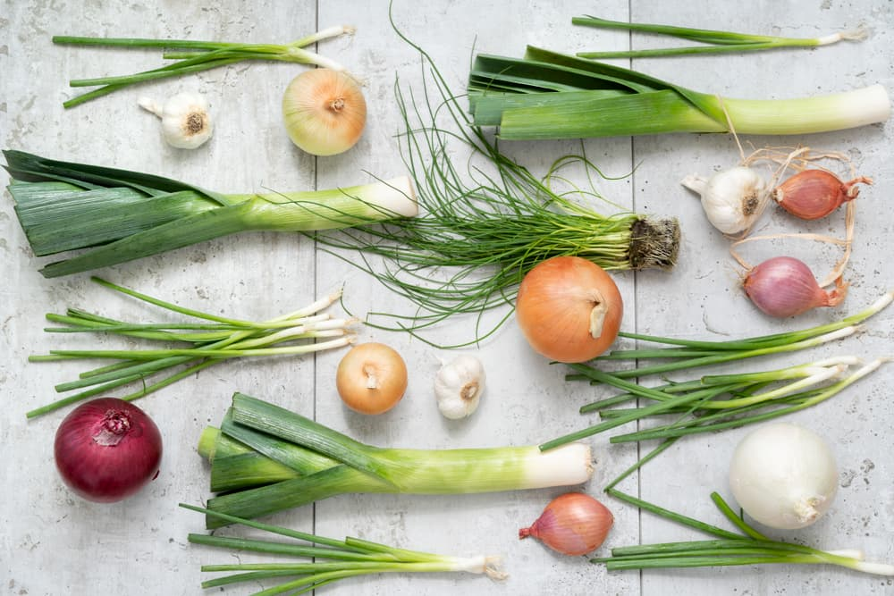Leeks, onions, garlic laid flat on table