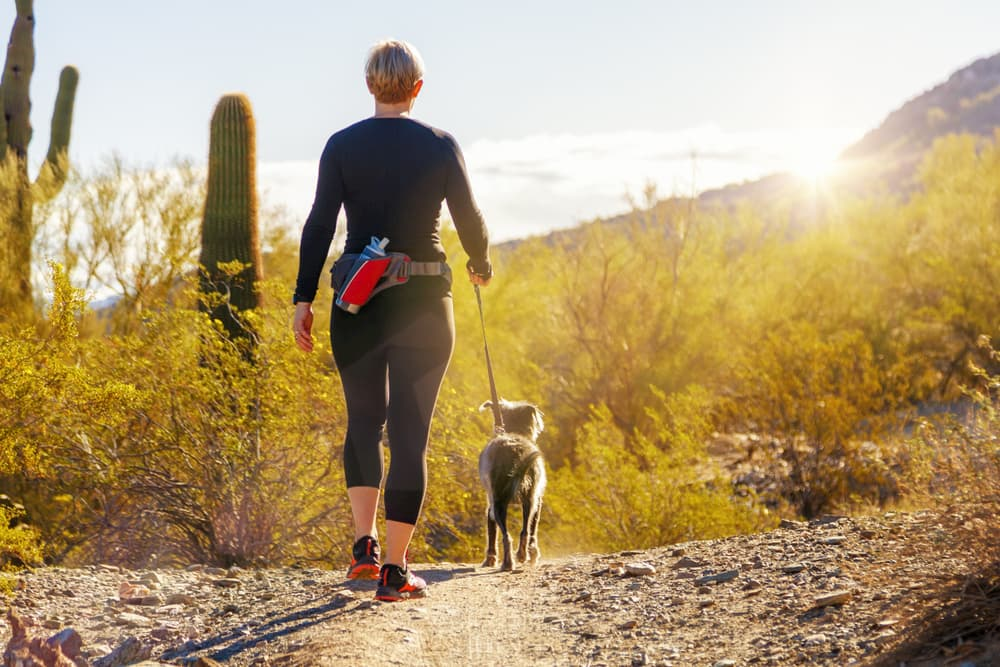 woman walking dog in the desert