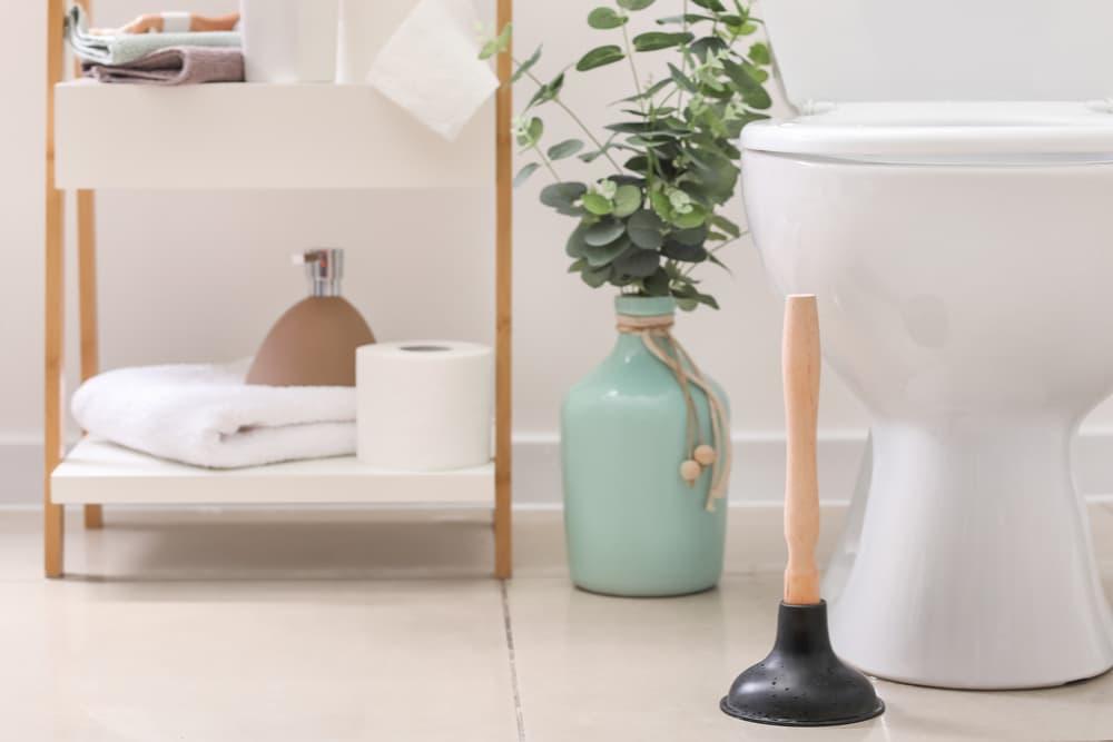 Plunger next to toilet
