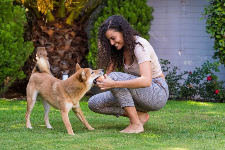 Woman playing with dog in yard