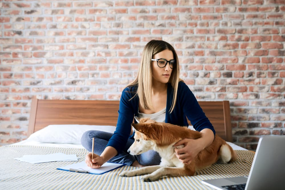 Woman reading computer screen with dog