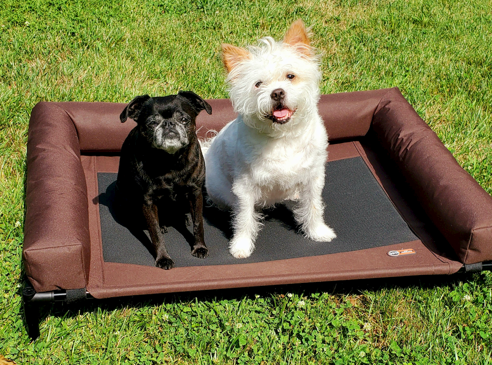K&H elevated dog bed