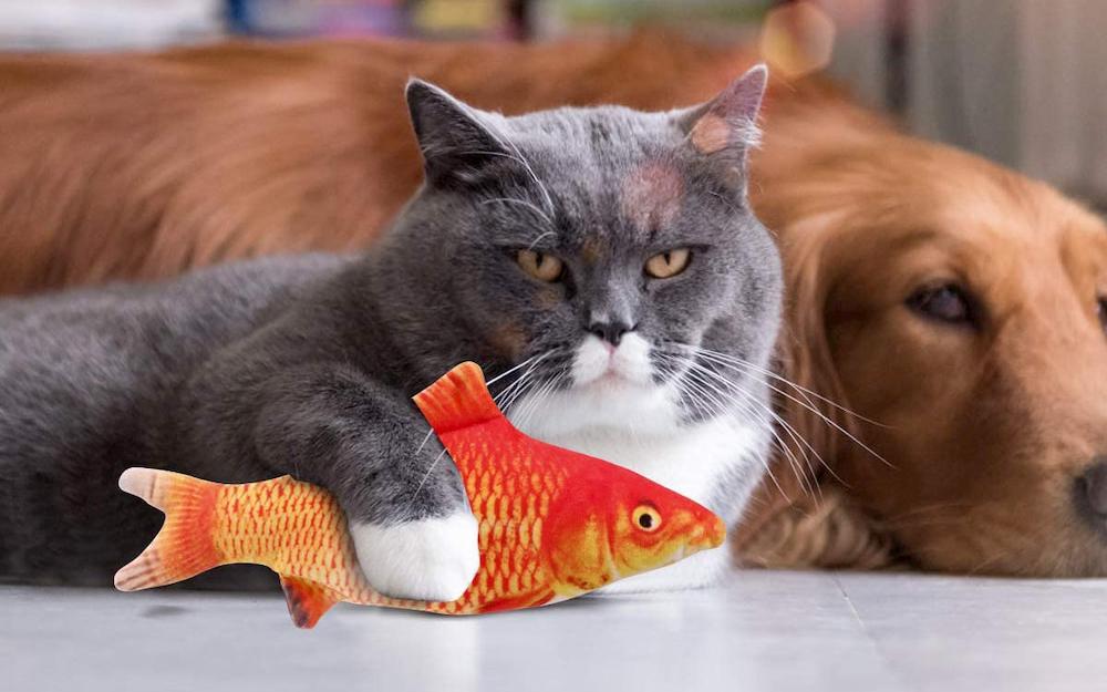 Beewarm cat fish toy
