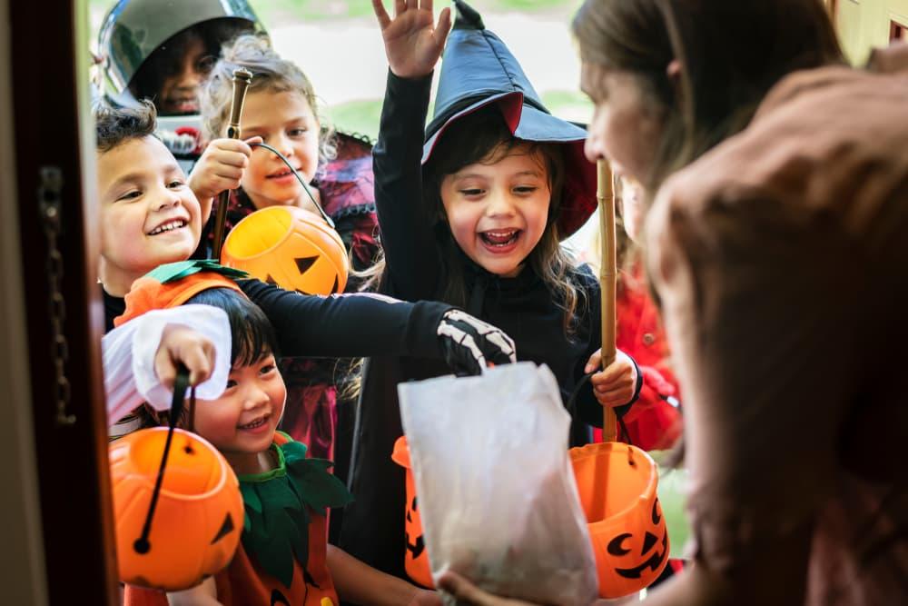 Kids halloween trick or treat at door