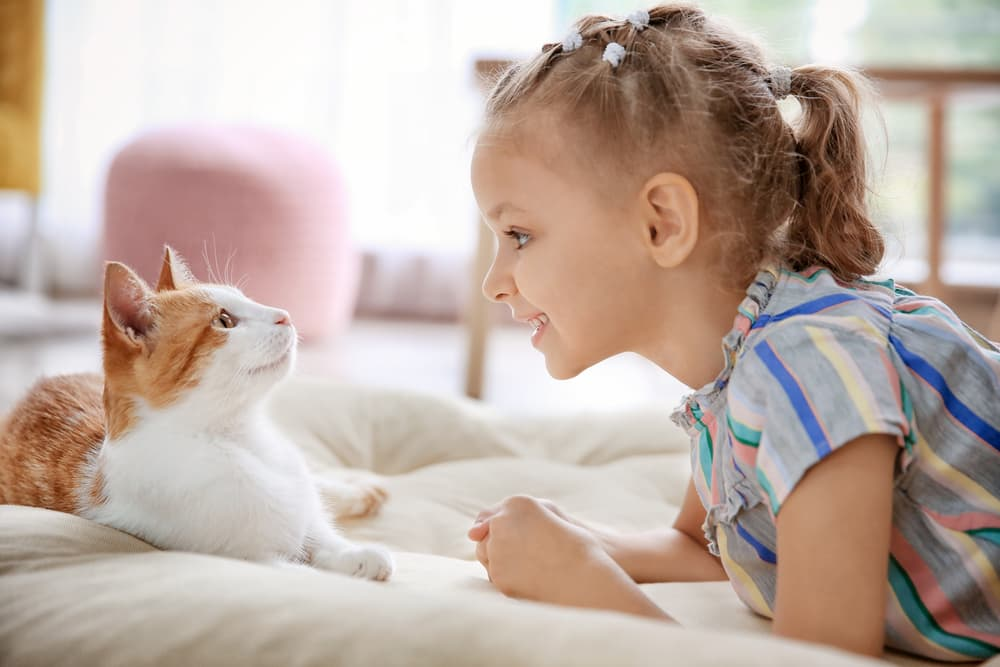Little girl talking to a nice cat