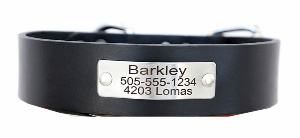 Leather collar with personalized name tag