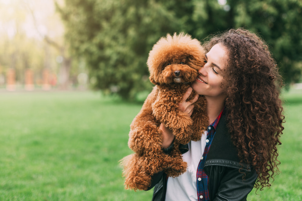 Woman holding adopted Poodle