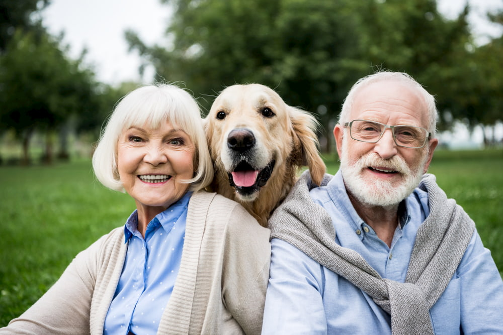 Older couple with adopted Golden Retriever