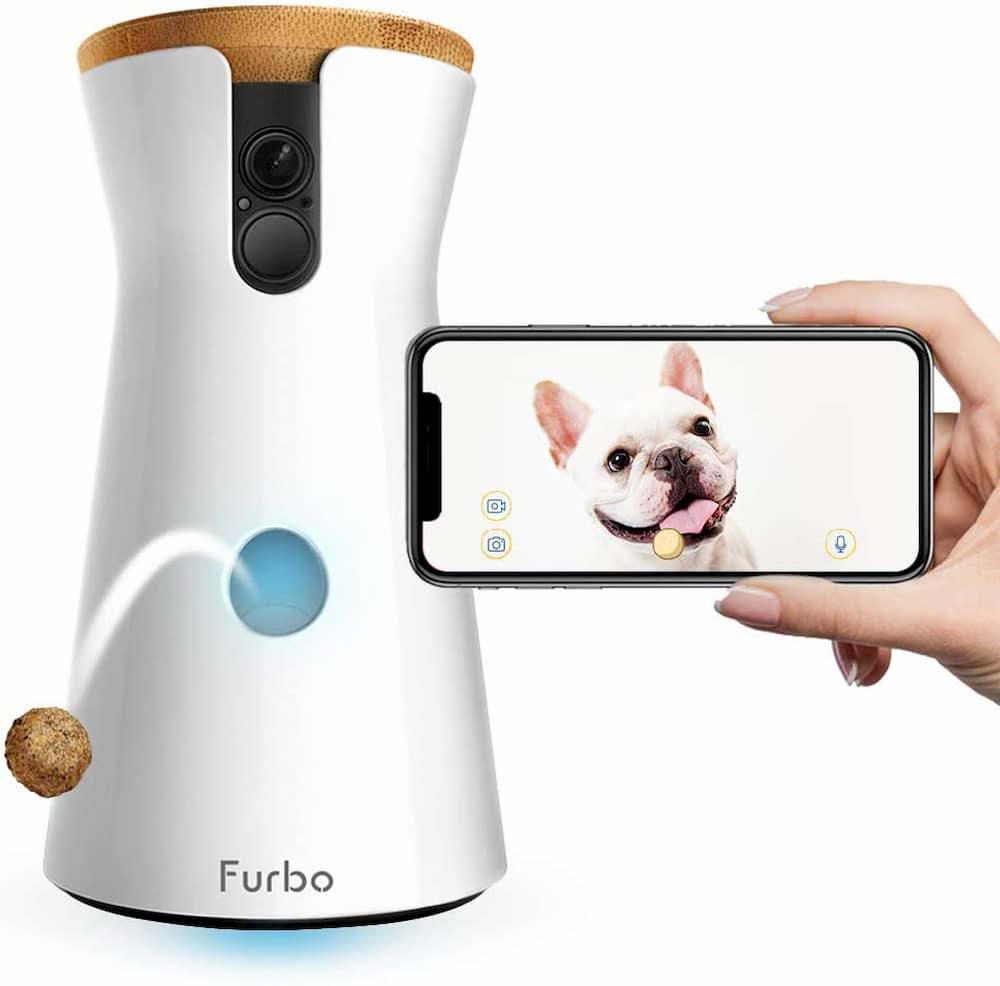 Furbo treat dispensing dog camera