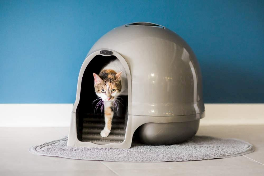 Petmate Booda Dome Clean Step Cat Litter Box