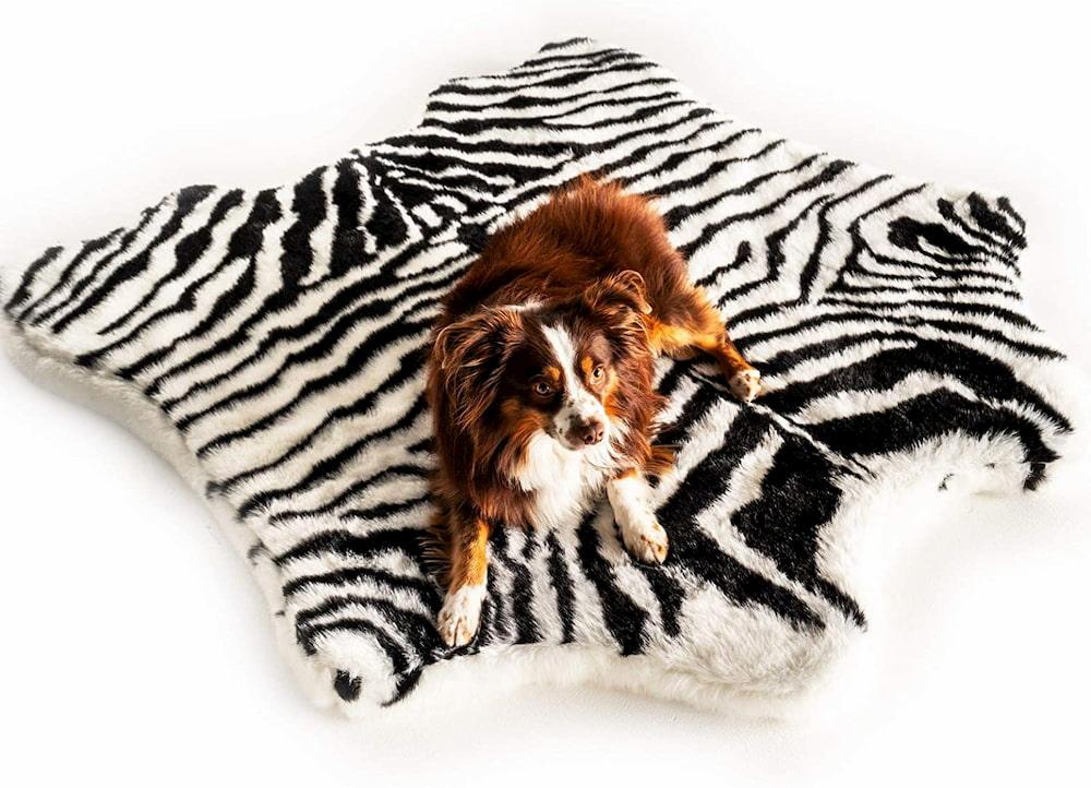 Zebra print luxury dog bed