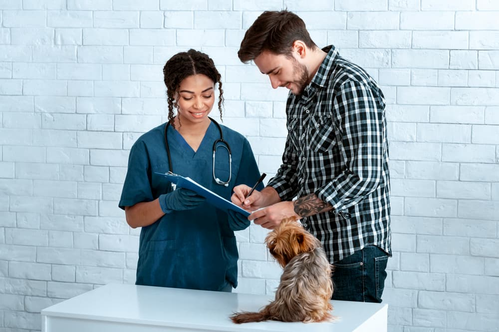 vet and pet owner with dog