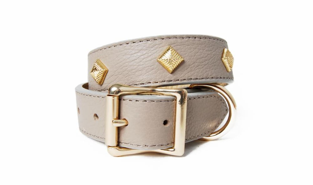 leather dog collar with gold studs