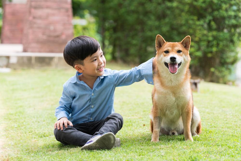 Japanese boy with dog