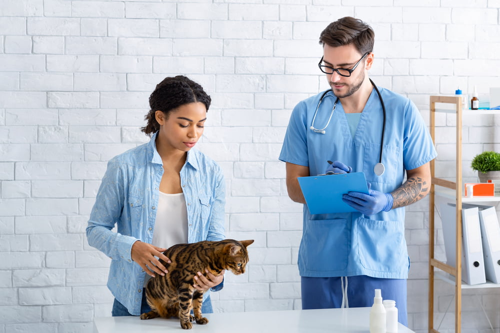 Woman with cat at vet