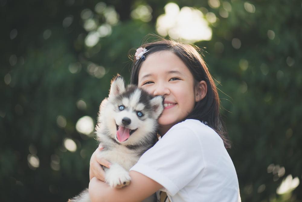 46 Japanese Dog Names for Kawaii Pups | Great Pet Care