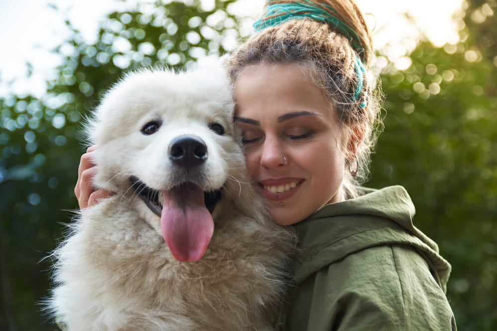 8 Best Joint Supplements For Dogs