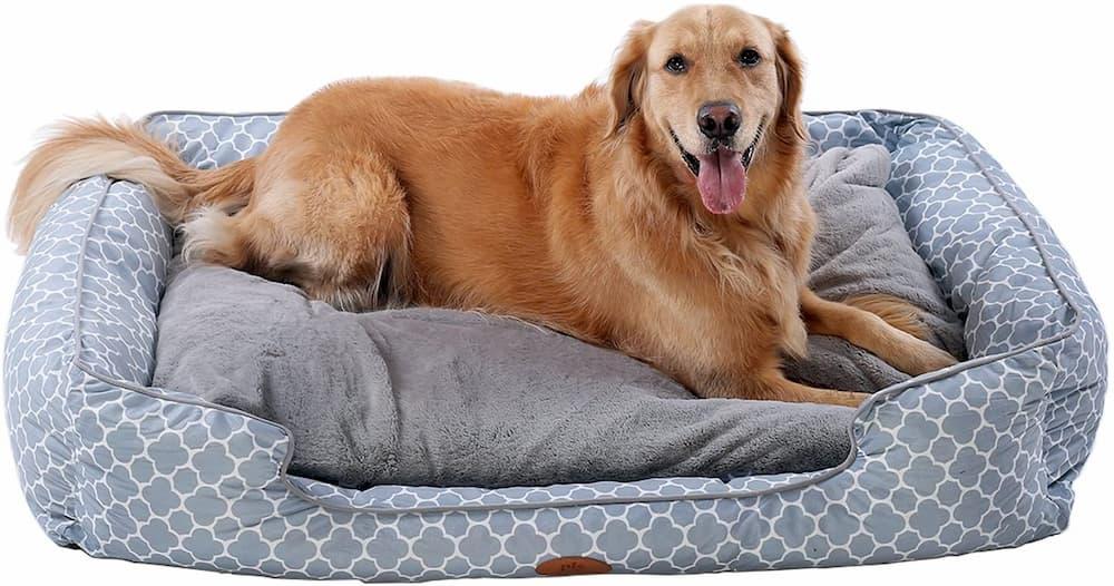 PLS Birdsong Trellis Bolster Dog Bed