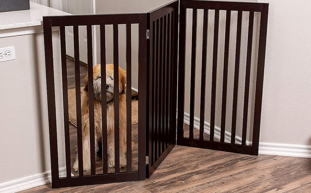 Internet's Best Traditional Pet Gate