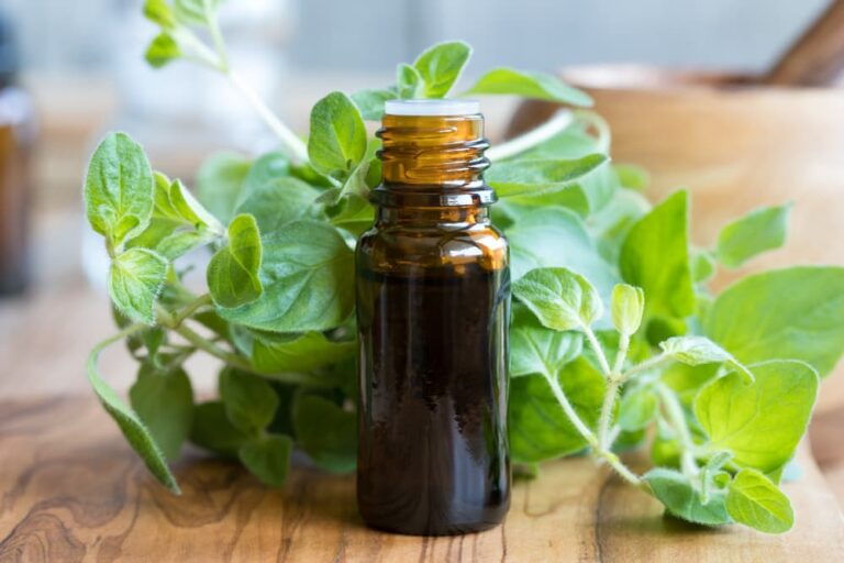 Oregano oil on table