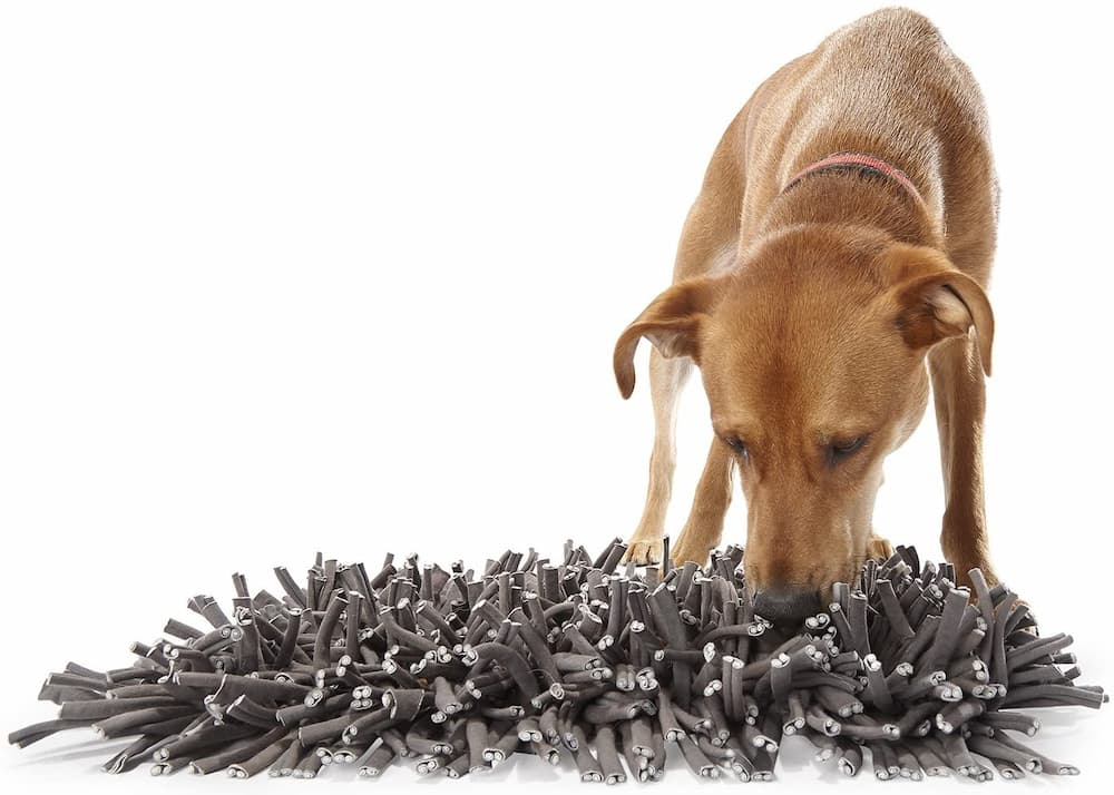 PAW5 Wooly Snuffle Mat