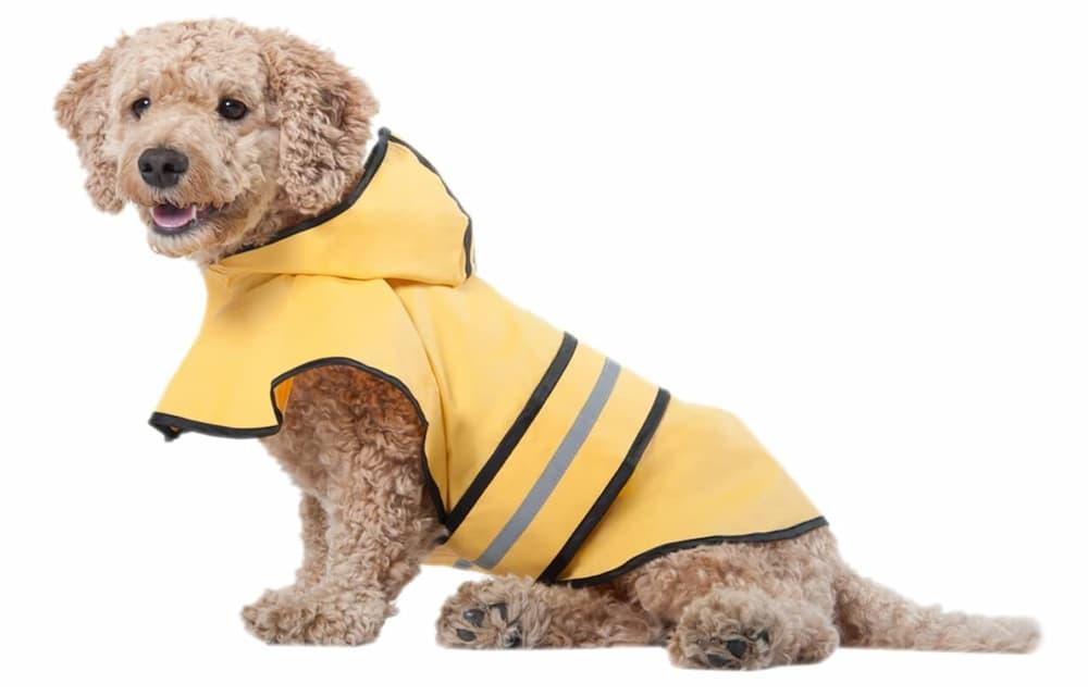 SPOT Ethical Products Dog Raincoat