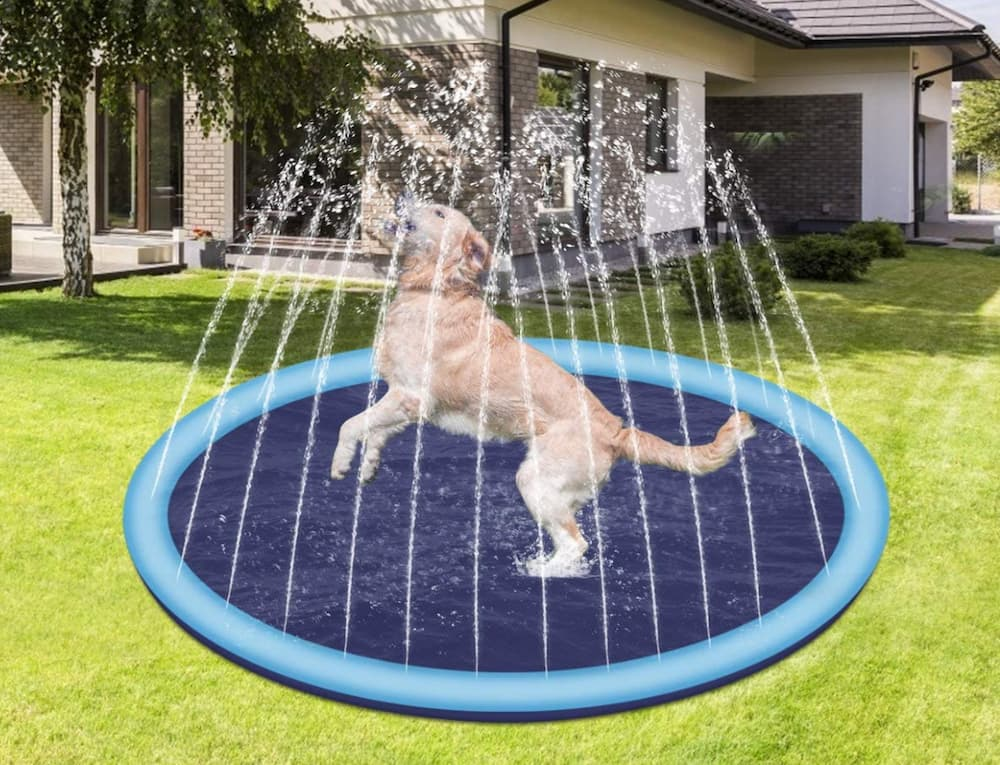 Splash Sprinkler Pad for Dogs