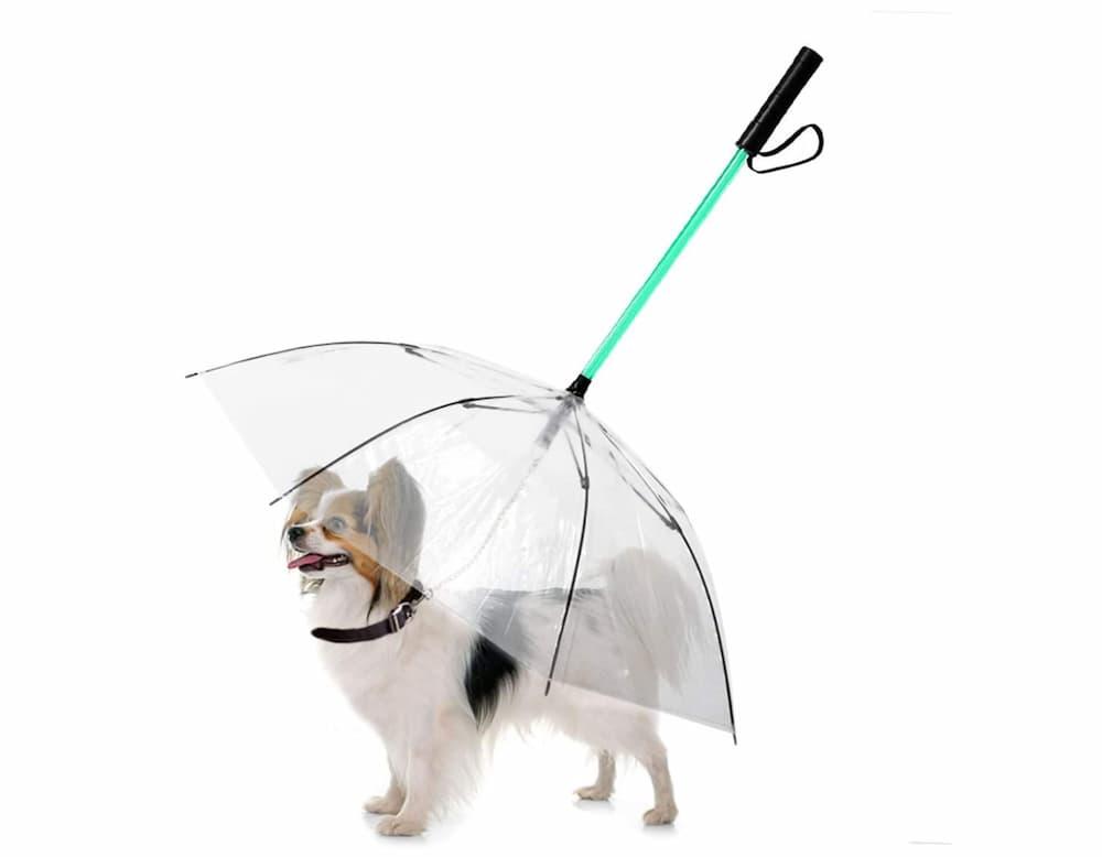 LESYPET LED Dog Umbrella