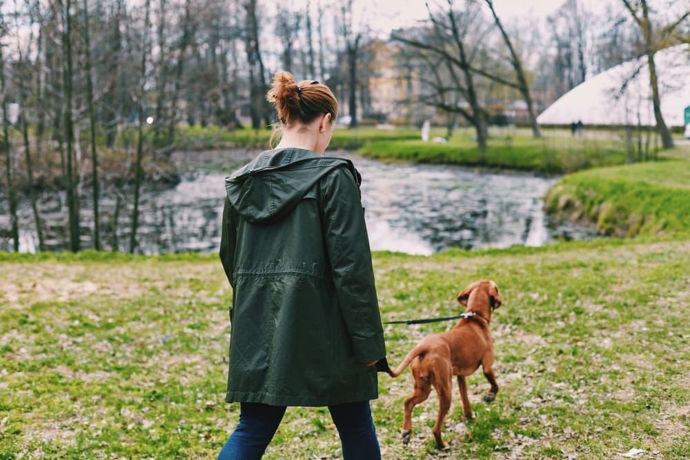 Woman and dog walking outside