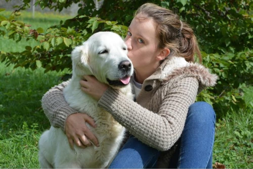 Eusoh Review: An Innovative and Cost-Saving Alternative to Pet Insurance