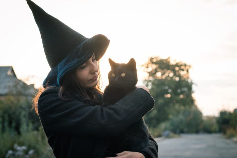 witch with a cat