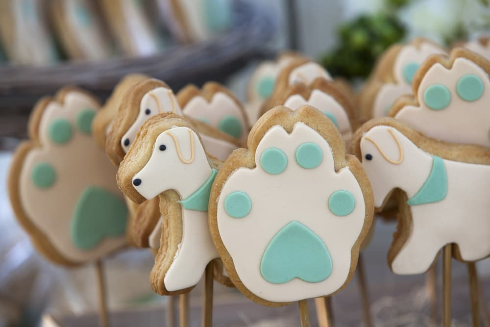 The Best of Philadelphia: Dog Bakery Edition