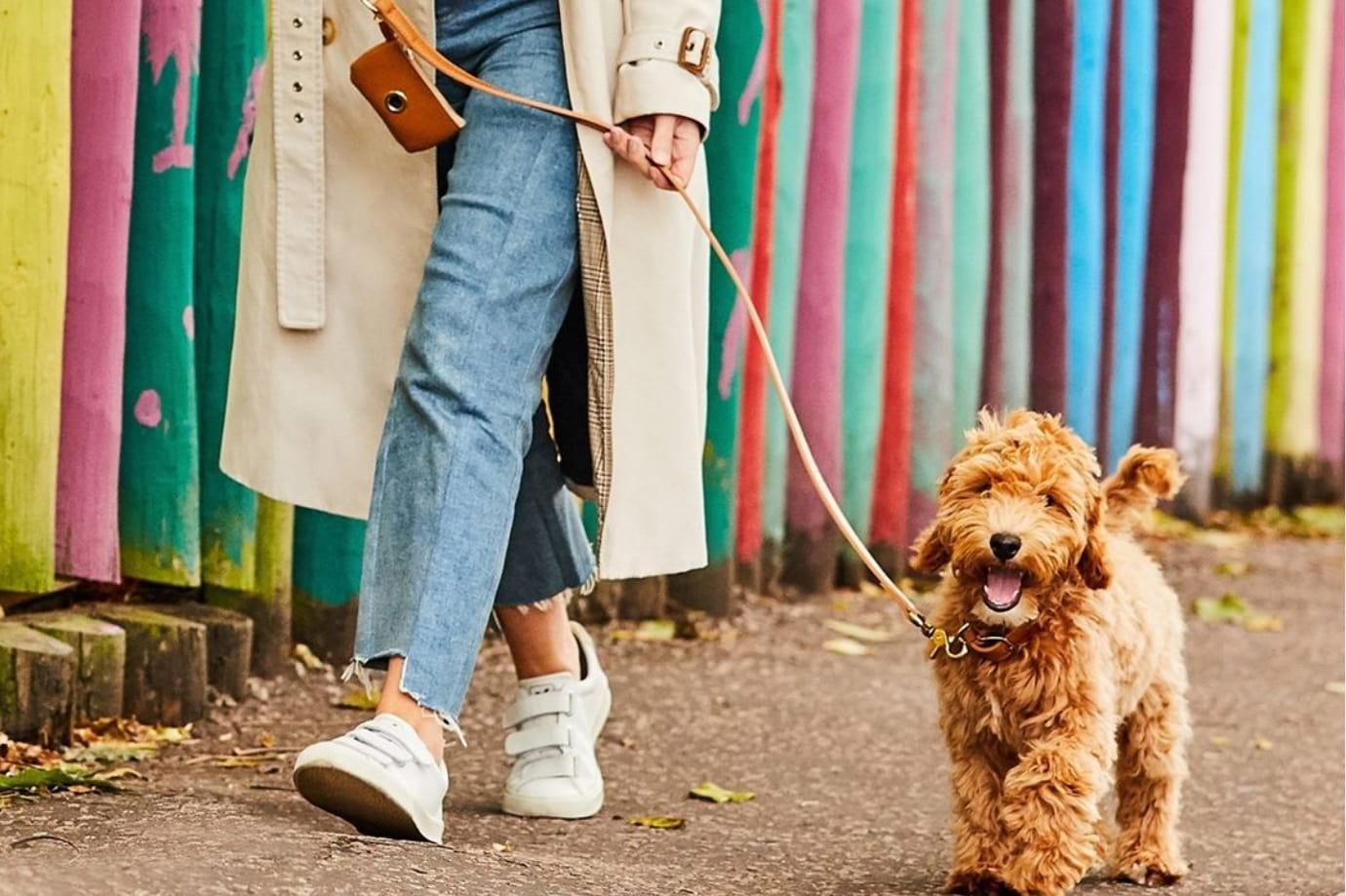 7 Best Dog Poop Bag Holders for Walking Ease
