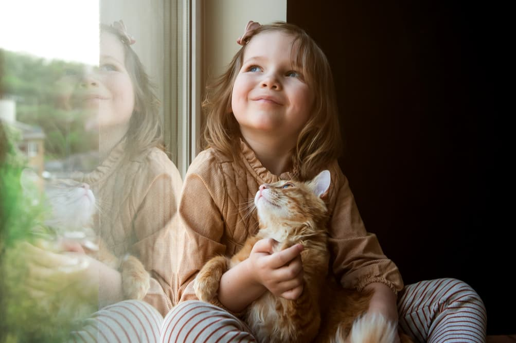 Child sitting on a windowsill sitting with cat both are very happy