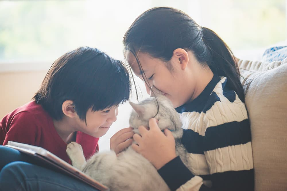 Two kids smiling and sitting on the couch with their cat