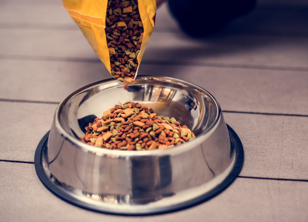dog food pouring in bowl