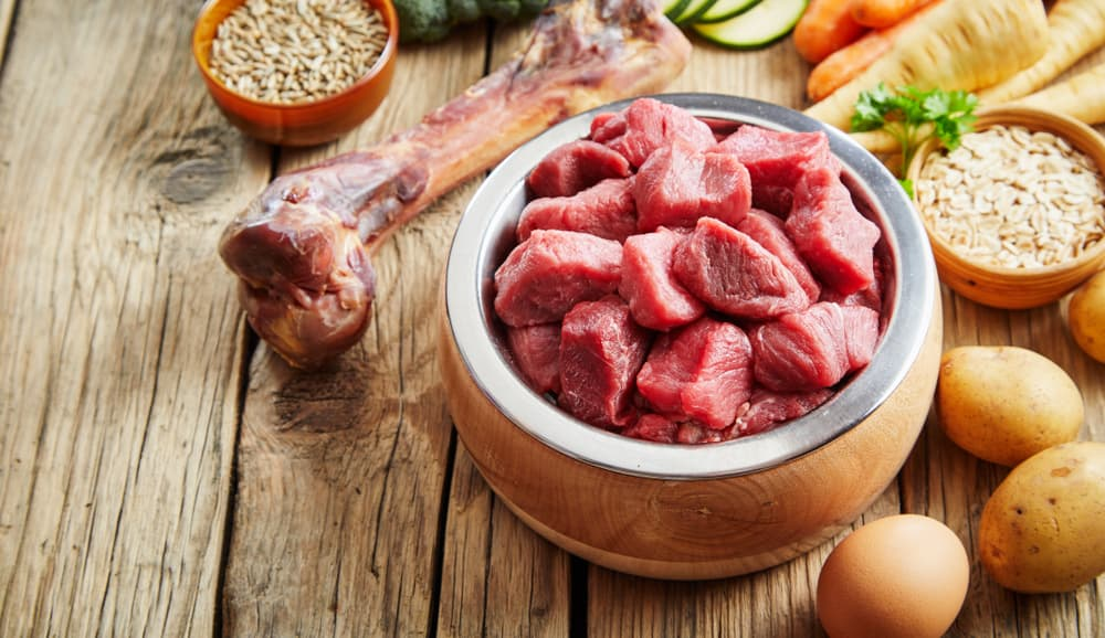 raw dog food in bowl