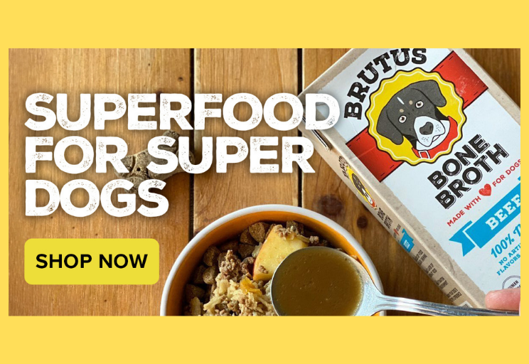 Get 10% Off Your First Order of Brutus Bone Broth