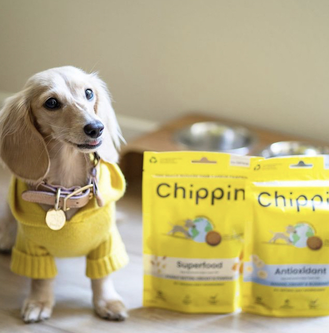 Get 25% Off Your First Order of Chippin Pet