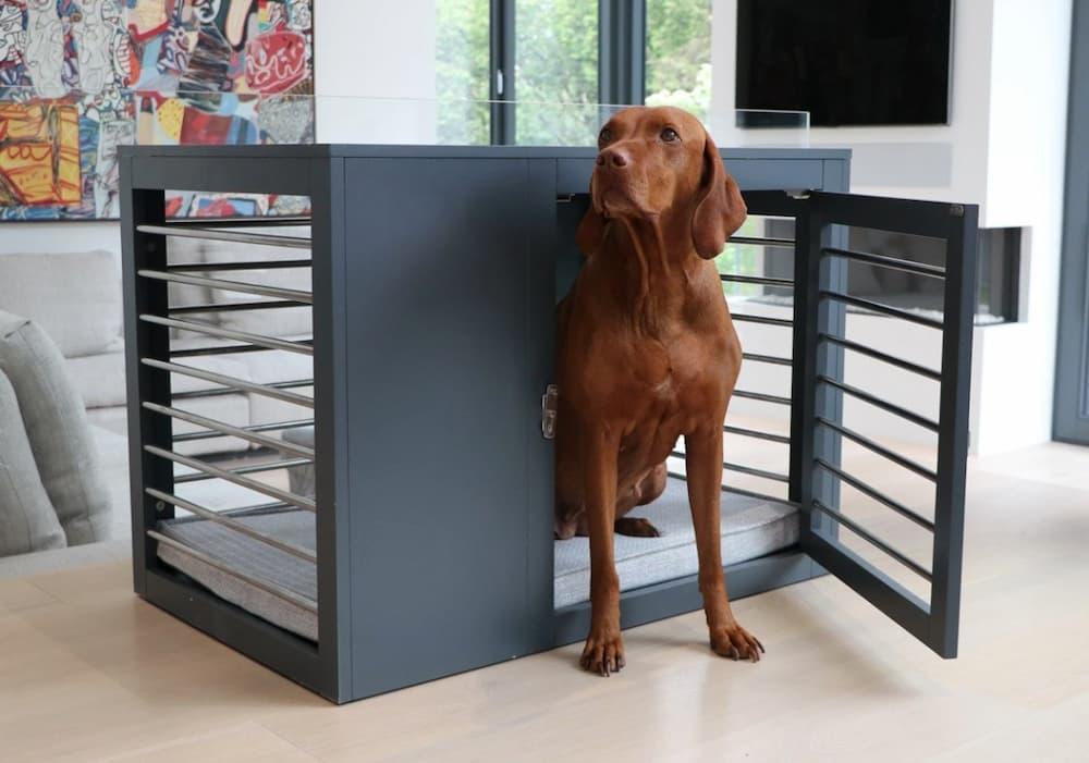 Best Dog Crate Furniture of 2021