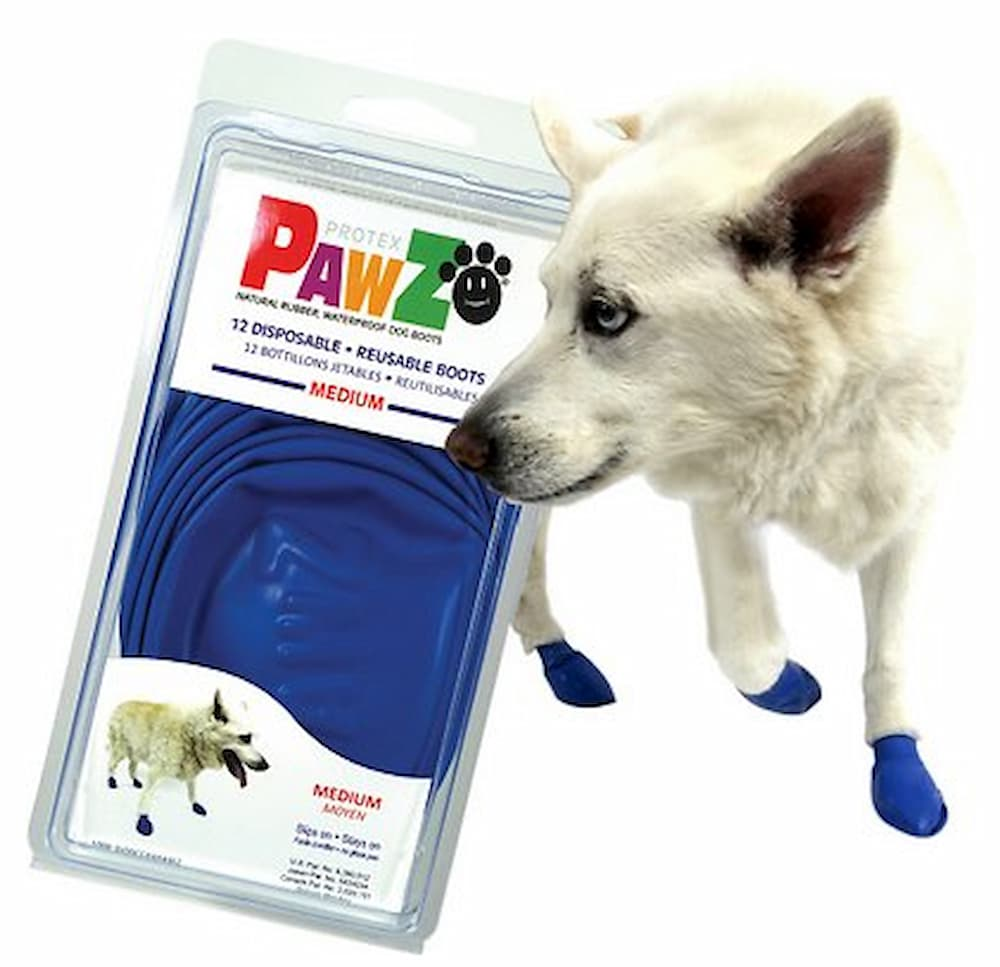 white dog boots paw protection
